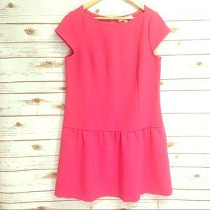 Loft Drop Waist Hot Pink Dress